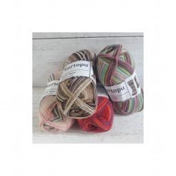 Sock Yarn  (5)