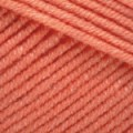 Оранжевый (№23)